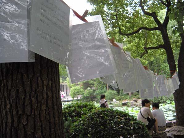 times square shanghai petites annonces arbres