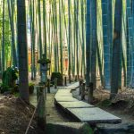 Une semaine en Asie : 3 itinéraires